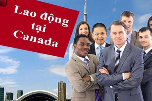 công ty xuất khẩu lao động Canada đáng tin cậy
