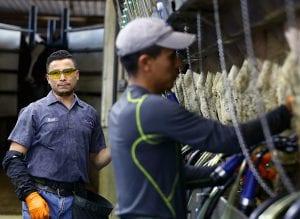 Điều kiện đi xuất khẩu lao động Canada