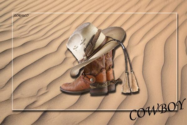 cowboy là gì, cao bồi, cao bồi miền tây, cao bồi mỹ, cao bồi viễn tây, cao bồi miền viễn tây, cao bồi đấu súng, cao bồi miền tây nước mỹ, cao bồi bắn súng
