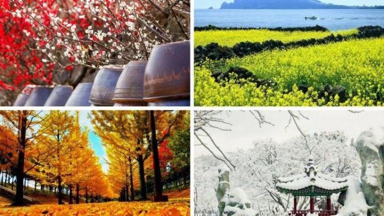 khí hậu nhật bản như thế nào, khí hậu nhật bản thuộc kiểu, thời tiết nhật bản, khí hậu nhật bản, đặc điểm khí hậu nhật bản, khí hậu nhật bản hôm nay, khí hậu nhật bản là gì, khi hau nhat ban nhu the nao, khi hau o nhat ban nhu the nao,