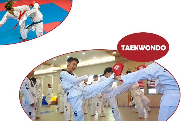 TAEKWONDO, võ taekwondo, đai taekwondo, taekwondo là gì, taekwondo có mấy đai, nguôn gốc của taewondo, đặc điểm của teawondo, taekwondo bắt nguồn từ đâu, taekwondo dùng chân hay tay, taekwondo khác karatedo ở điểm nào