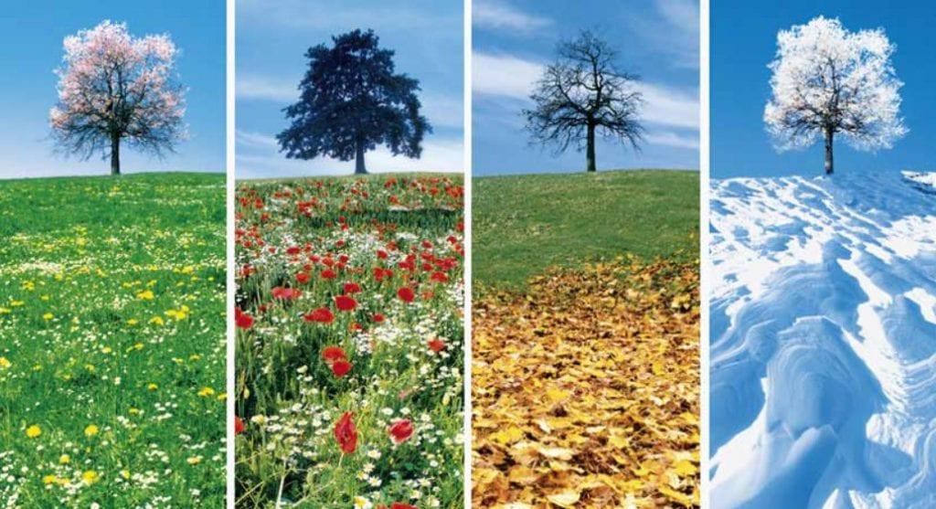 khí hậu new zealand, thời tiết ở new zealand, khí hậu ở new zealand, thời tiết tại new zealand, thời tiết new zealand tháng 2, thời tiết new zealand tháng 6, thời tiết new zealand tháng 9, thời tiết new zealand tháng 11, khí hậu của new zealand, khí hậu tại new zealand, thời tiết ở new zealand như thế nào, thời tiết ở new zealand hiện tại, thời tiết của new zealand, thời tiết new zealand tháng 4, thời tiết new zealand, nhiệt độ new zealand,