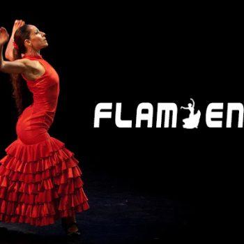 flamenco, flamenco dance, vũ điệu flamenco, flamenco là gì, vũ điệu flamenco tây ban nha, điệu flamenco, flamenco tây ban nha, điệu flamenco guitar, điệu nhảy flamenco, nhảy flamenco, điệu nhảy flamenco của tây ban nha, điệu nhảy flamenco tây ban nha
