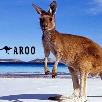 chuột túi, kanguru, kangaroo con, kangaroos, chuột túi kangaroo, căng gu ru, con kangaroo, kangaroo úc, kangaroo sống ở đâu, con chuột túi, chuot tui, kanguru sinh con, con chuot tui, kangaroo là của nước nào, kangaroo của nước nào, xứ sở chuột túi, chuột kangaroo, chuột túi ăn gì, chuột túi sống ở đâu, con chuột túi kangaroo, chuột túi con mới sinh, chuột túi nhảy, chuột túi kangaroo là biểu tượng của nước nào, thịt chuột túi kangaroo
