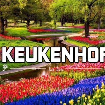 vườn hoa keukenhof hà lan, vườn hoa keukenhof ở hà lan, vườn hoa tulip ở hà lan, vườn hoa keukenhof, vườn hoa hà lan
